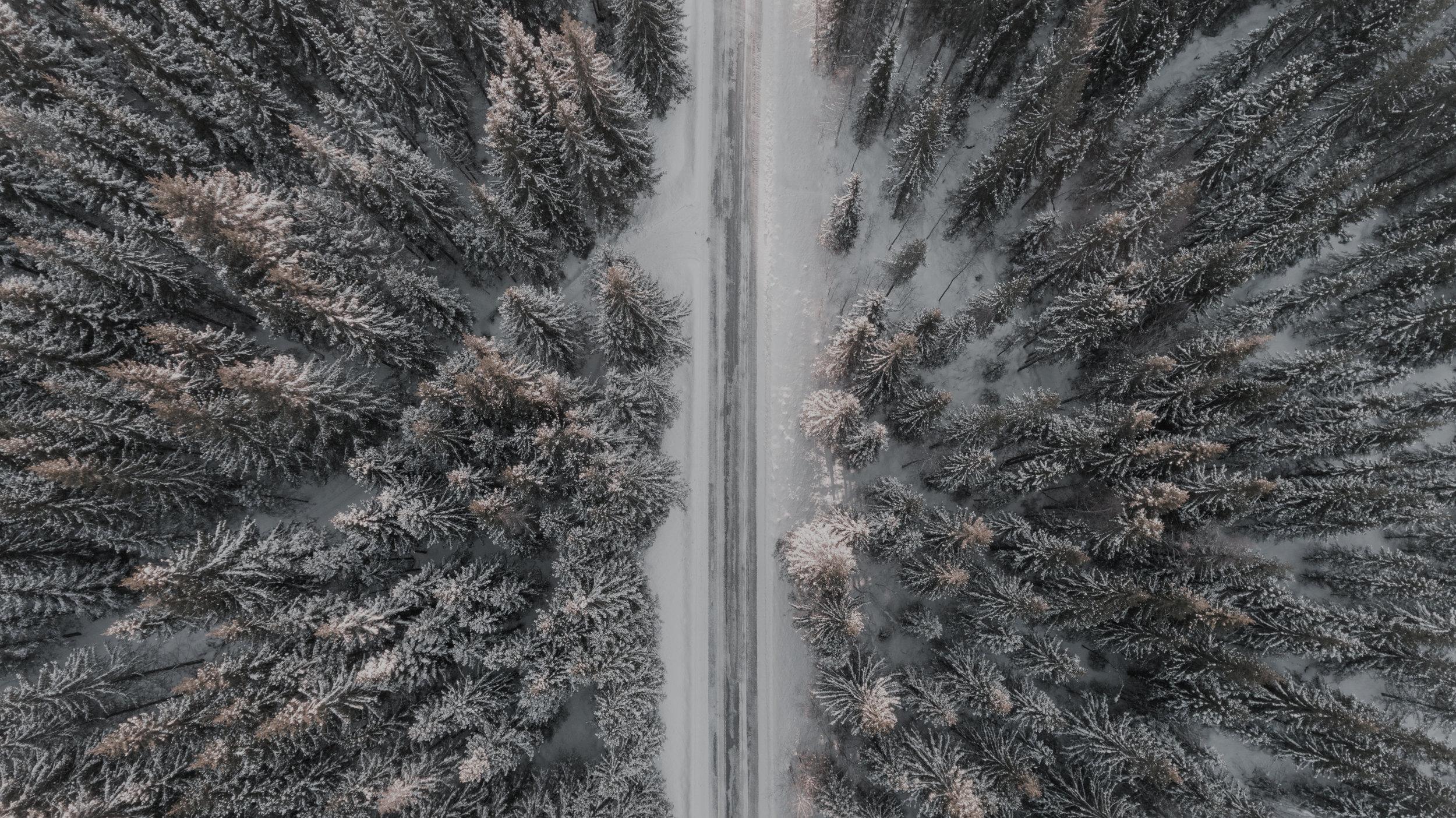 road_above.jpeg