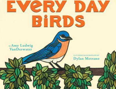 every day birds.jpg