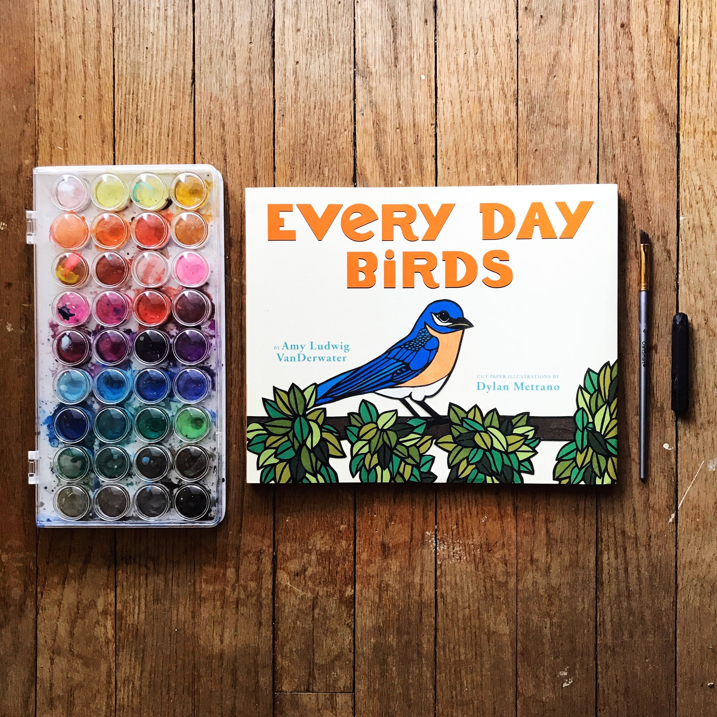 Every Day Birds  by Amy Ludwig VanDerwater illustrated by Dylan Metrano