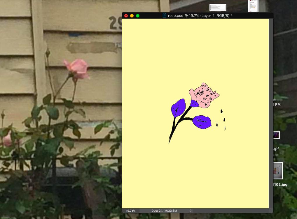 Screen Shot 2018-11-25 at 5.08.27 PM.png