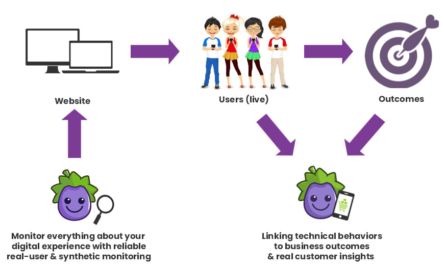 CXI-diagram-website.jpg