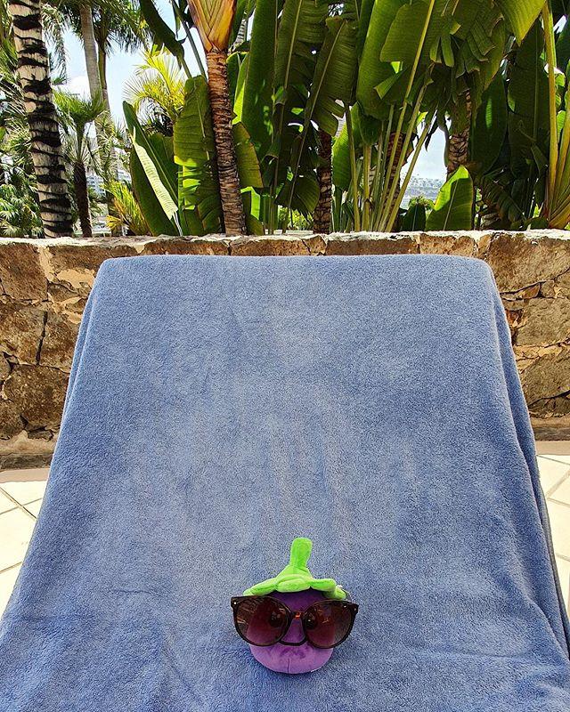 Eggy's soaking up the sun... please do not disturb 🌞☀️💦🌊. #sun #holidays #cute #beach #pool #sunglasses #funny