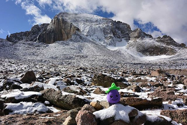 Eggy getting over the (mountain) peak of the week #humpday #cute #wanderlust #instatravel #colorado
