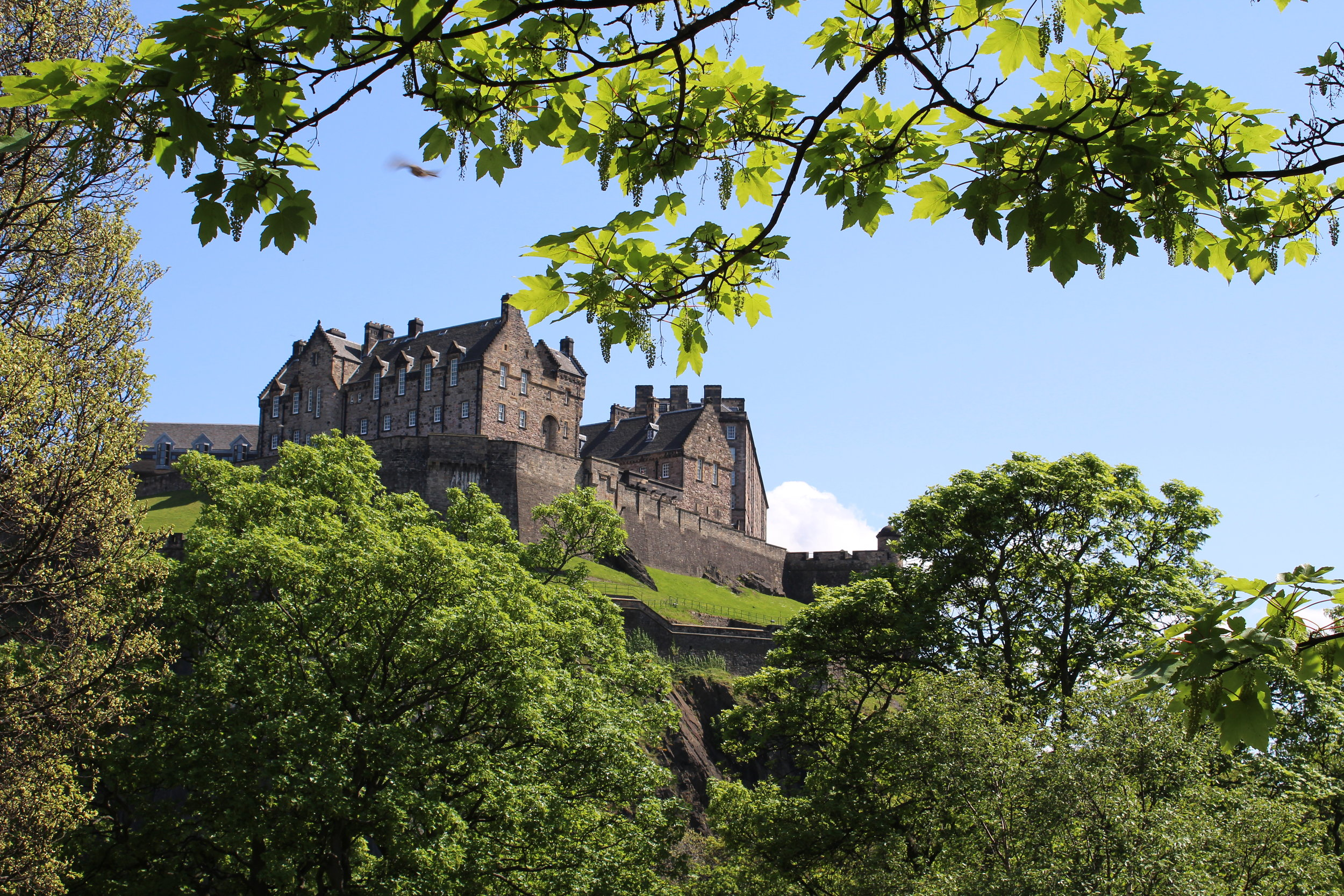 The Castle on the Hill.