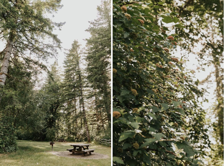 033_Ragan&Max-2207_Ragan&Max-2200_Oregon_Forest_Smith_Wedding_Tillamook_Oregon-Forest-Wedding_Homestead_Tillamook-Forest-Wedding.jpg