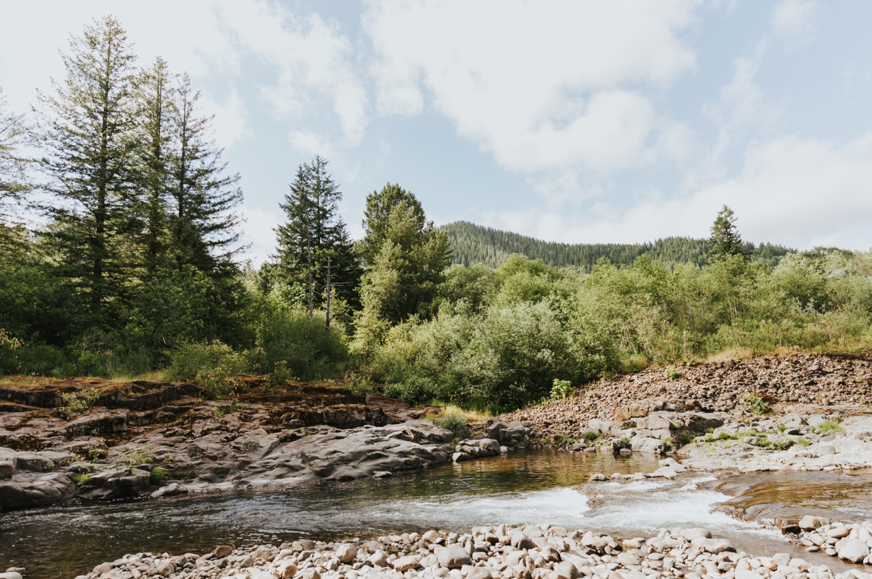034_Ragan&Max-1956_Oregon_Forest_Smith_Wedding_Tillamook_Oregon-Forest-Wedding_Homestead_Tillamook-Forest-Wedding.jpg
