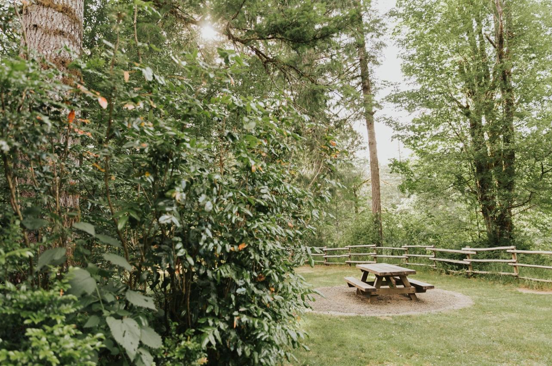 058_Ragan&Max-2239_Oregon_Forest_Smith_Wedding_Tillamook_Oregon-Forest-Wedding_Homestead_Tillamook-Forest-Wedding.jpg
