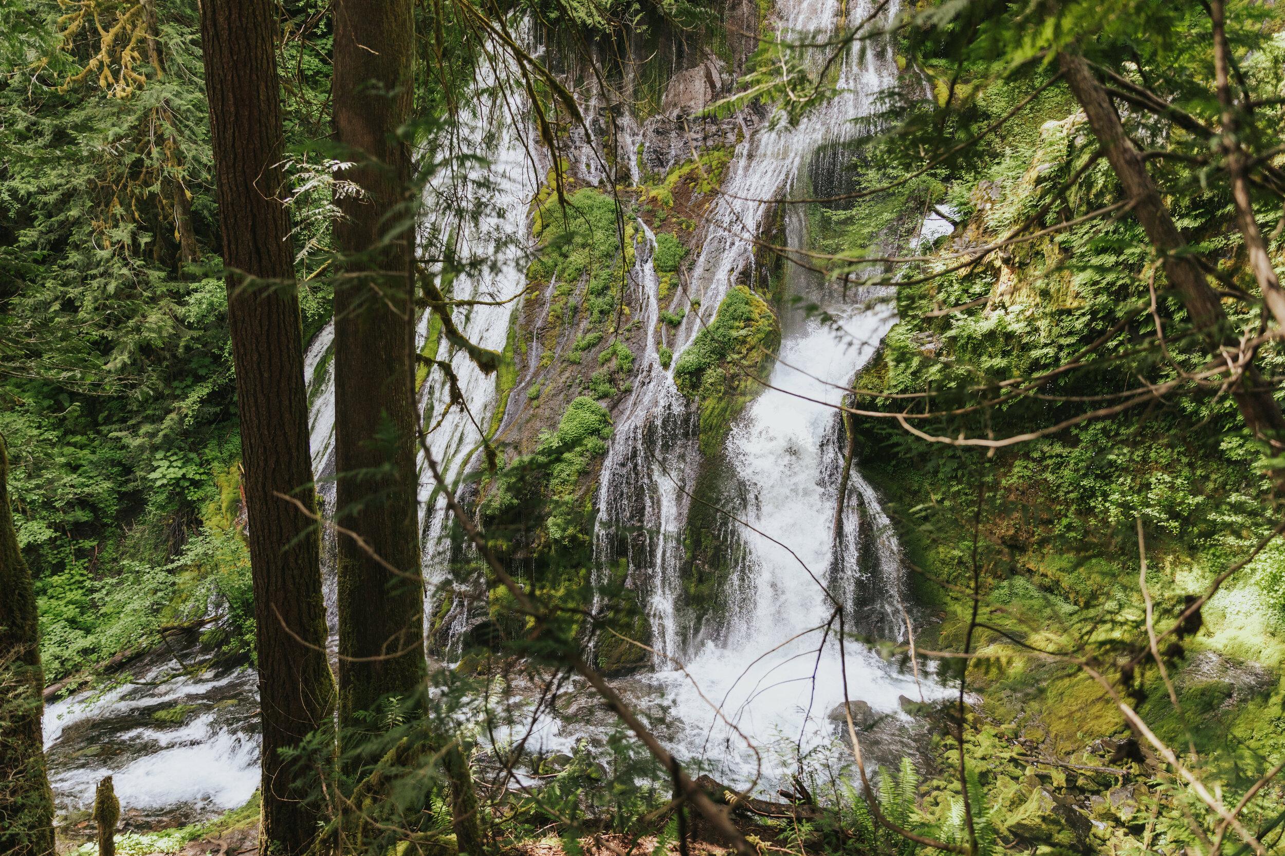 Marissa-Solini-Photography-Panther-Creek-Falls