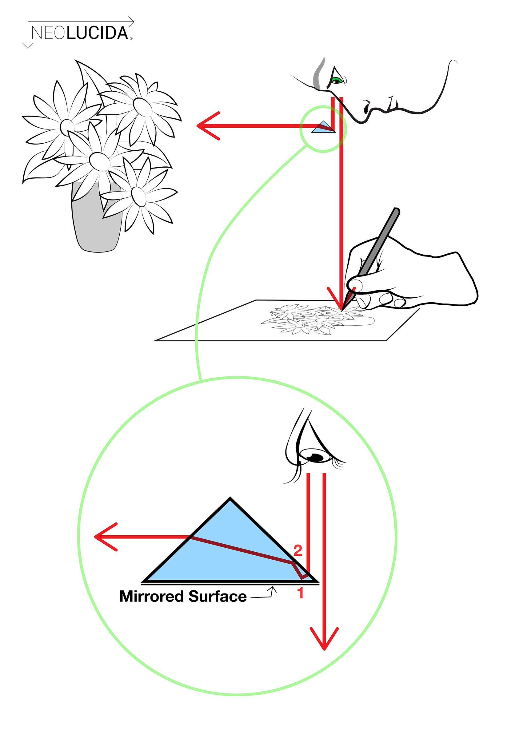 NL Prism Diagram 2400px.jpg