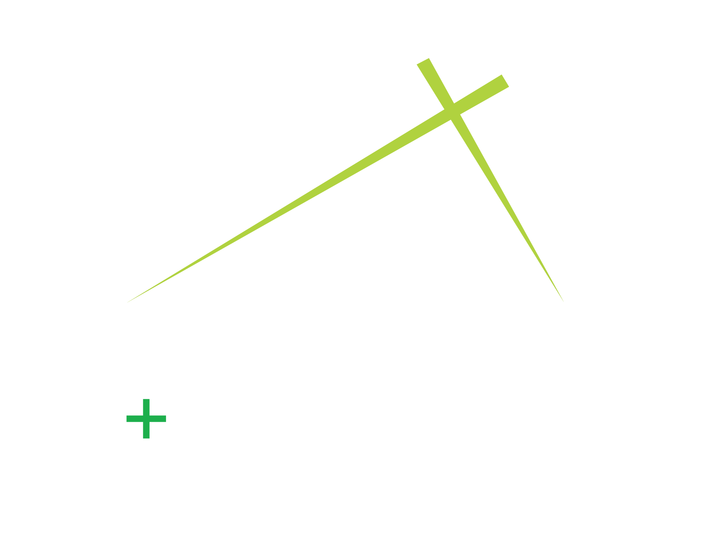 TSR-logo-0Greens-White-NoBG-01.png