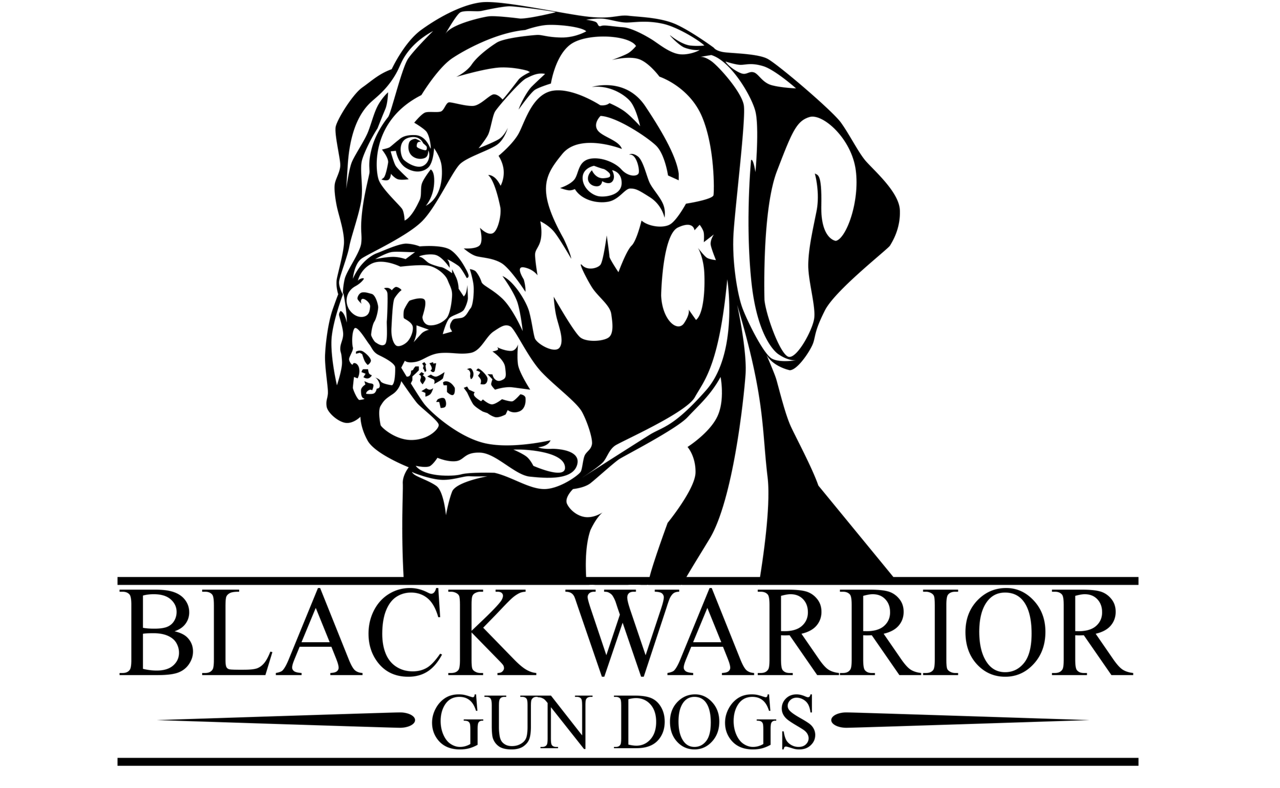 BLACK WARRIOR GUN DOGS, LLC    Low force, positive reinforcement training from basic obedience to advanced gun dog. Located in Tuscaloosa, Alabama.