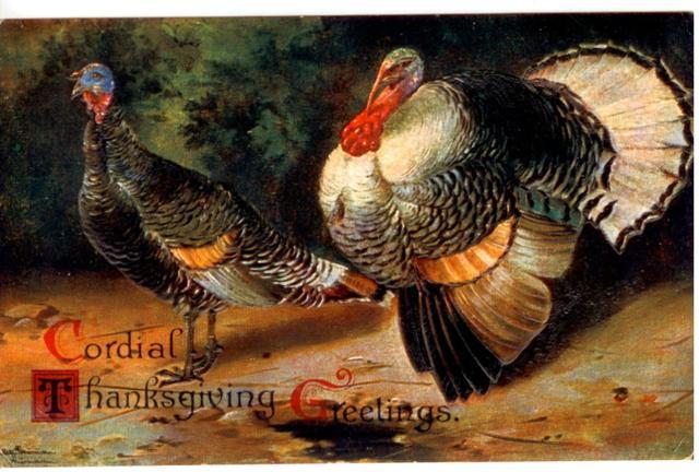 header_thanksgivinggratitude.jpg