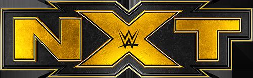 NXT_Logo_2019_by_xlxvladxlx copy2.png