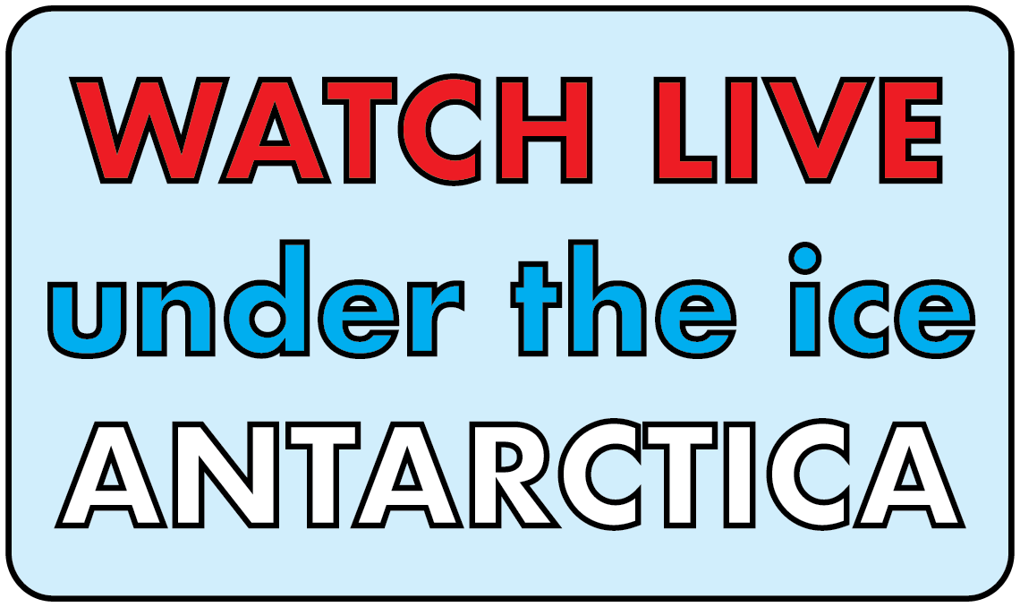 Live_Video_Website_simple_buffer-01.png