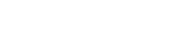 flowco logo.png