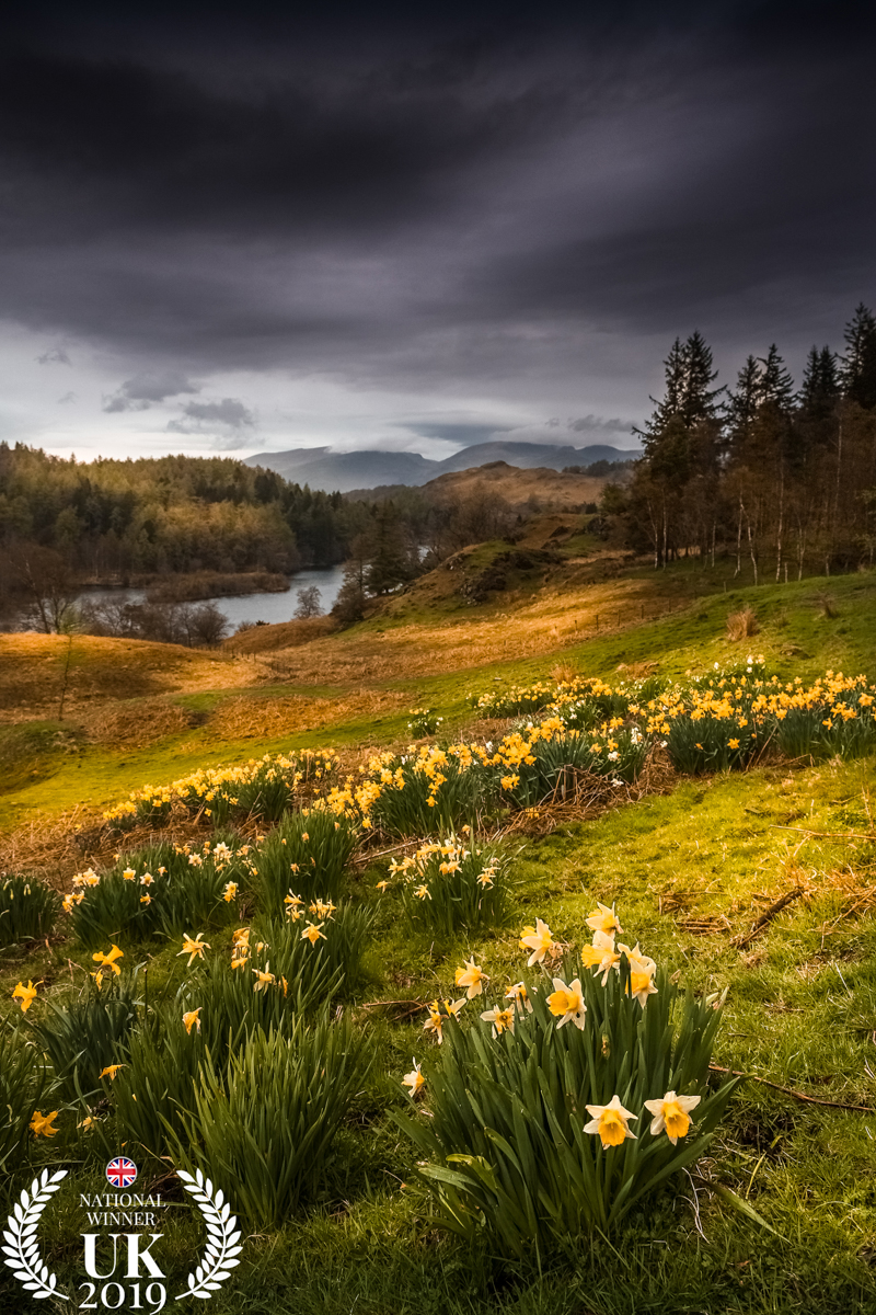 Dark clouds over Tarn Hows by James Reed