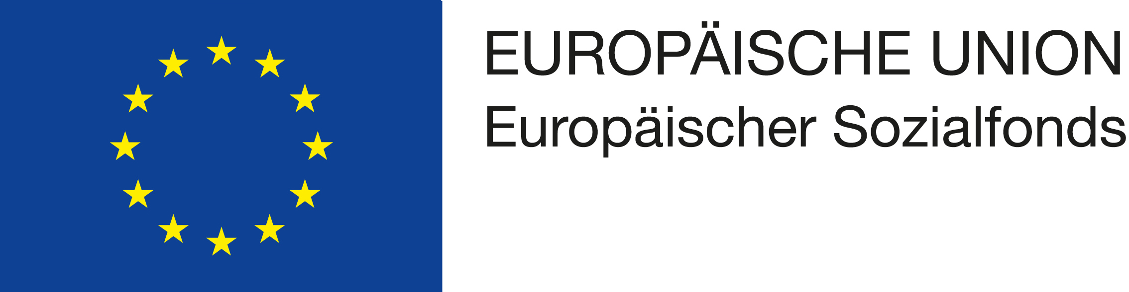 EU-Logomit_EU-und_ESF_Schriftzg_rechts-oben_neben_der_Fahne.jpg