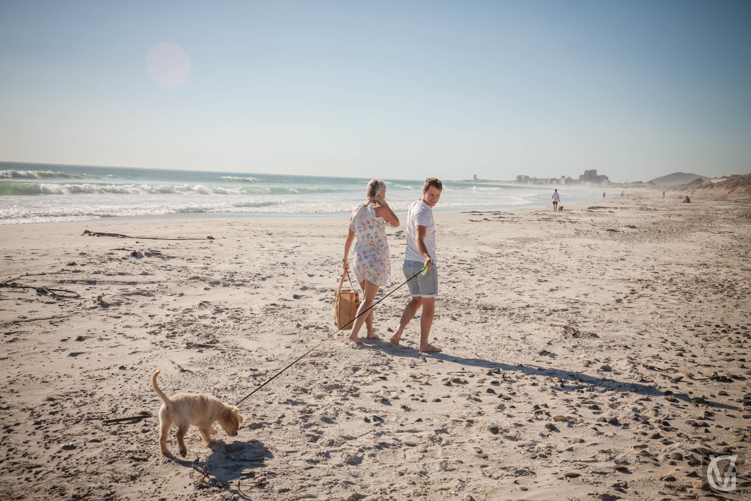 An engaged couple with their puppy take a walk on the beach