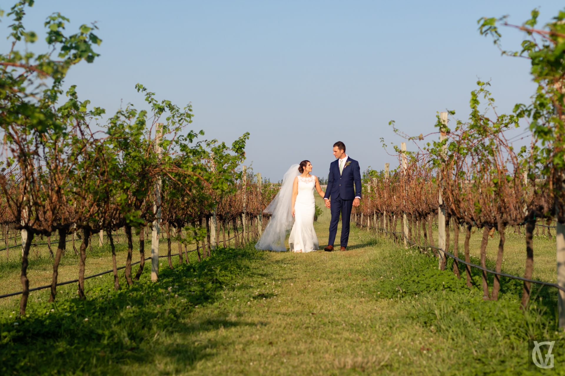 A couple walking in Cathedral Peak's Wine Estate