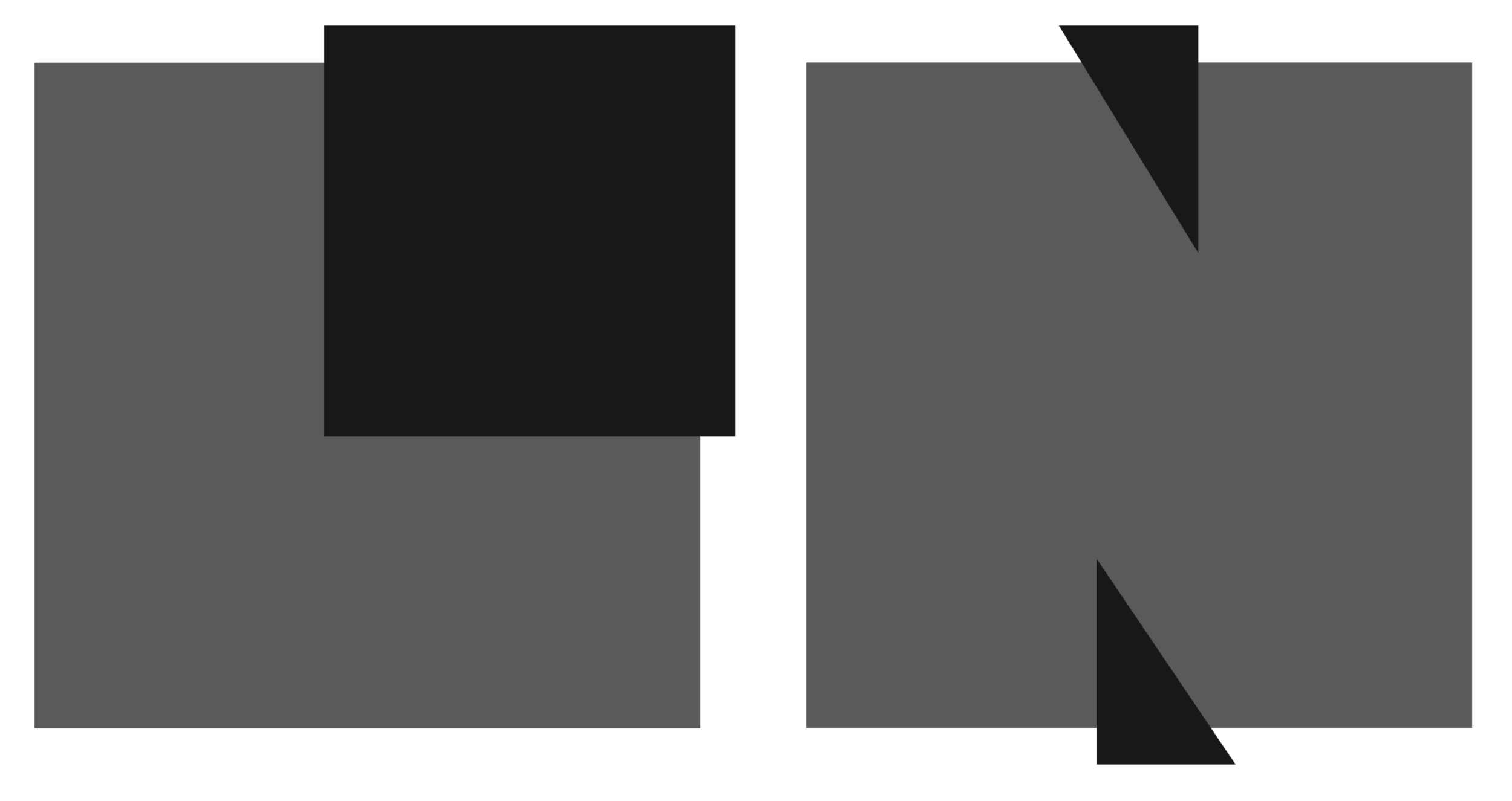 logo lnw grayscale.png