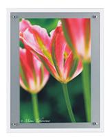 FloralSeries-4