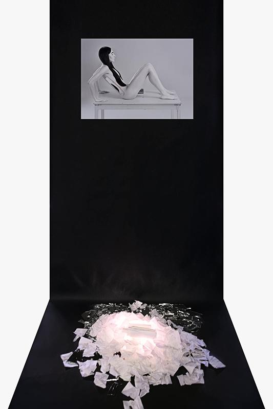 Camera Obscura (инсталляция)