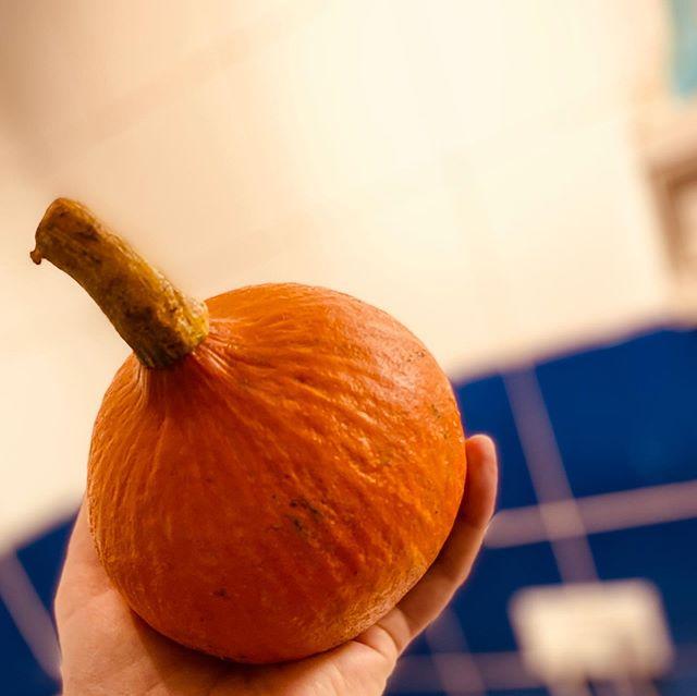 Onion squash. #Autumn 🍂 makes a smooth soup this one ☝️#veggie