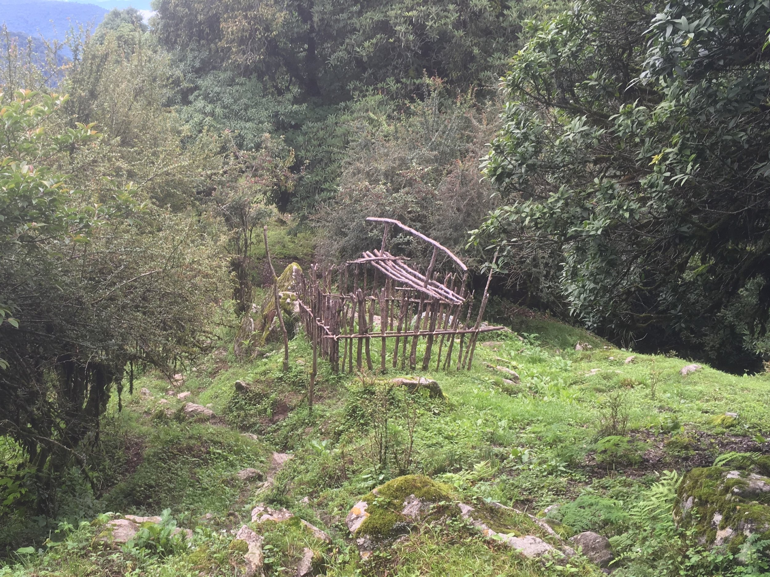 The skeletal remains of a hut very similar to the one we stayed in
