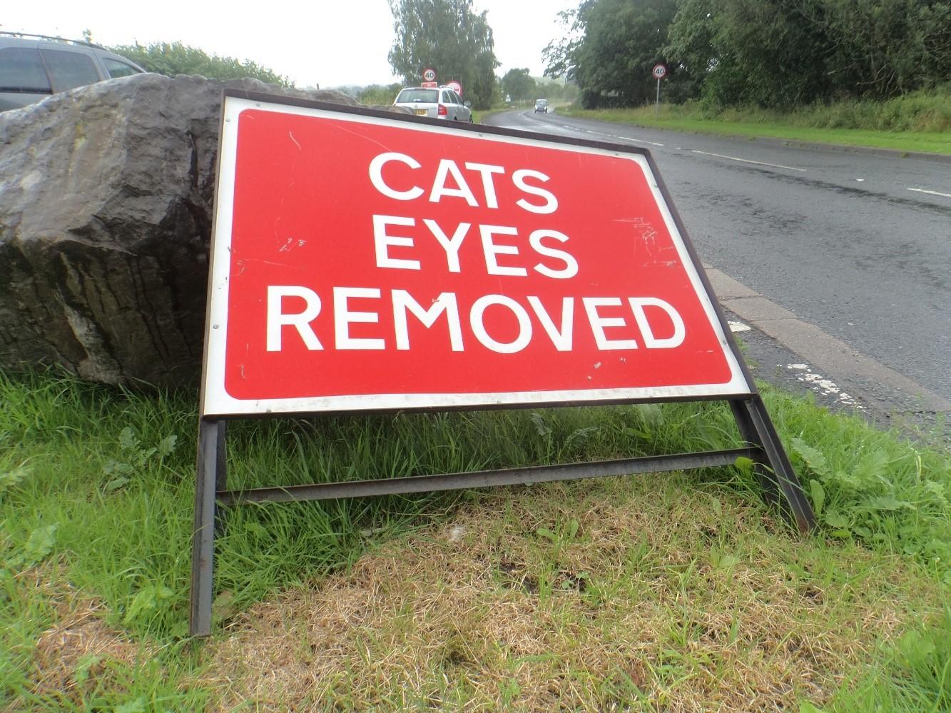 Cat Eyes Removed.jpg