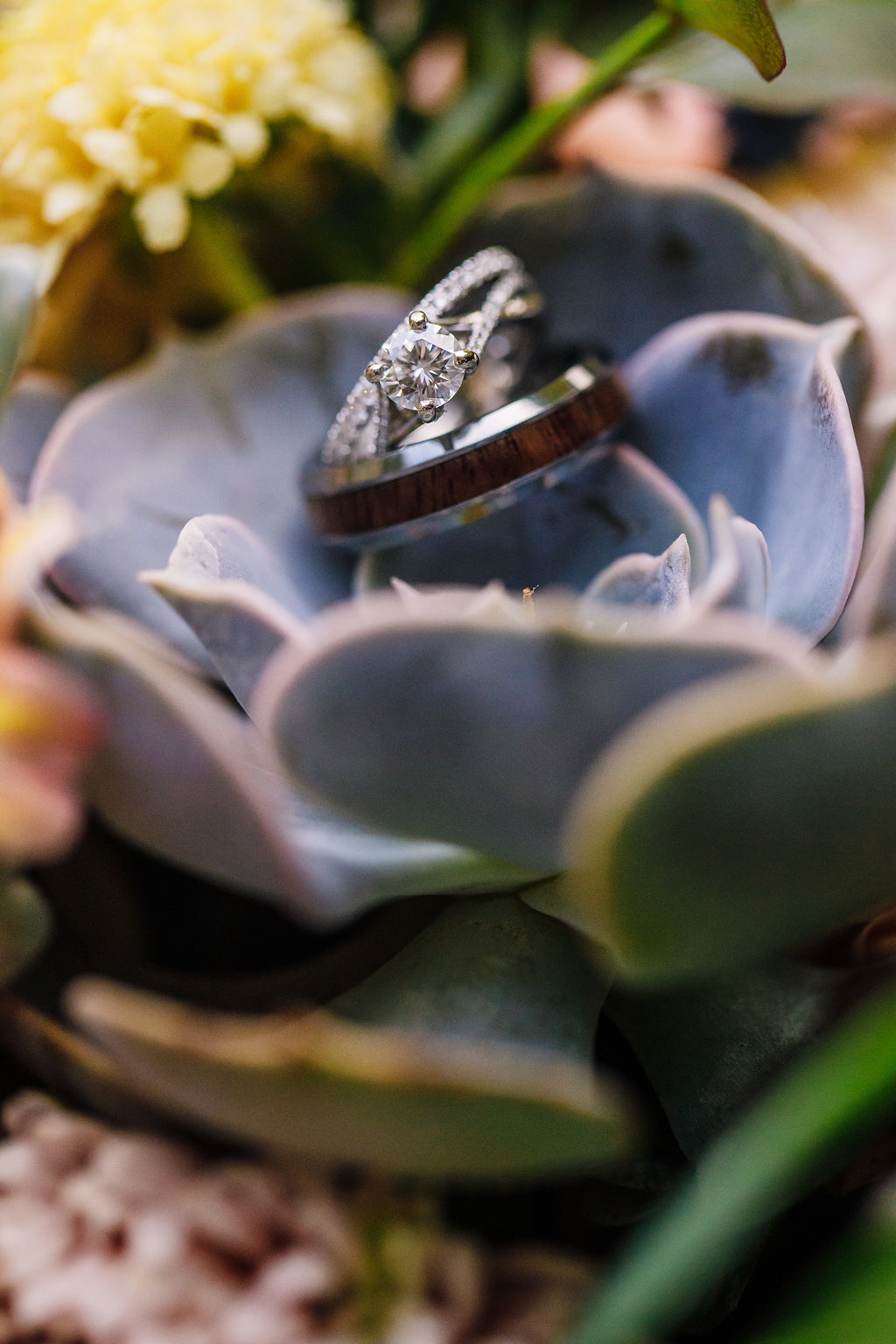 brielle-davis-events-photography-by-brea-linganore-winery-james-sarah-wedding-rings.jpg
