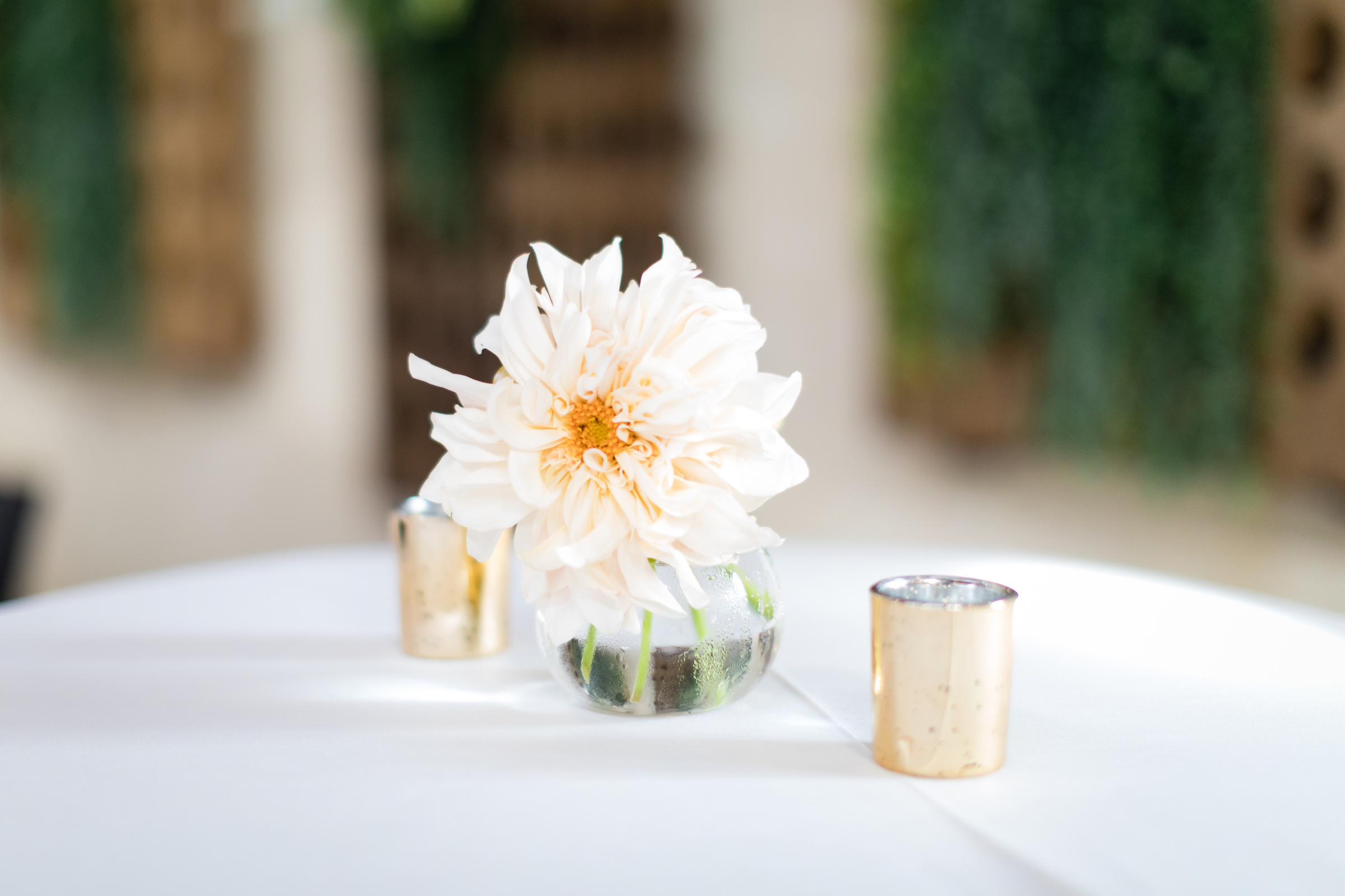 brielle-davis-events-kairos-photography-chandler-hill-wedding-reception-405.jpg