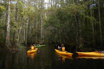 Canoe Blog 4.jpg