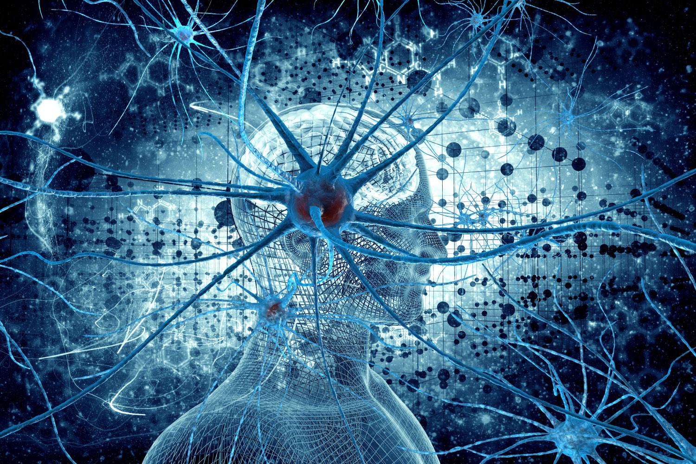 neurons_artificial_intelligence.jpg
