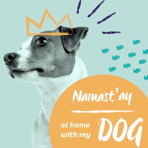 IG2847-All+Pets+FC+Namast'ay+SMS.jpg
