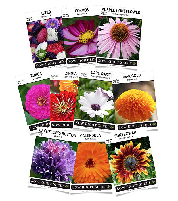 Get these seed packets here