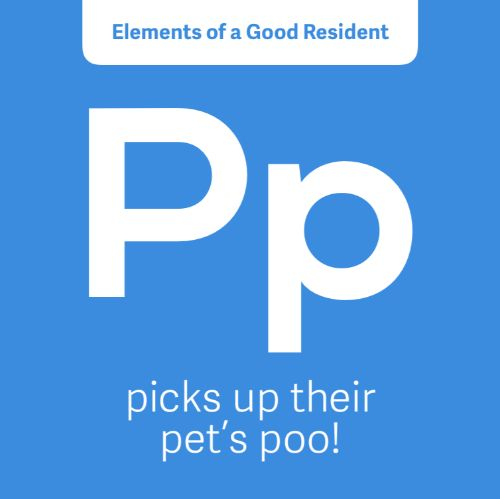IG5440-Periodic FC Pet Poo Digital Graphic.jpg