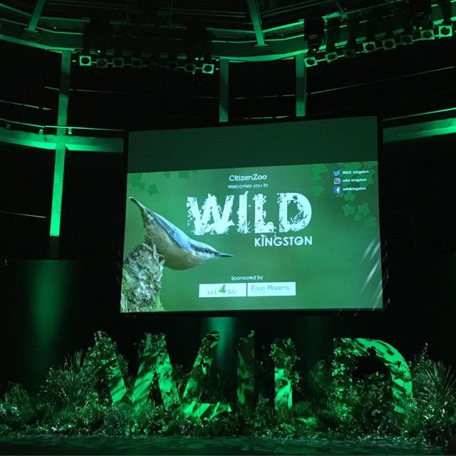My whole family (aged 4 to 40) was inspired and motivated by the passionate speakers, lush set and important messages delivered tonight at #WILDkingston What a brilliant movement by #citizenzoo and Kingston's best #ElliotNewton #laurabrackers and team to encourage us all to think local and #rewild our own gardens and urban spaces.  Top take home messages for me: London is an amazing #londonnationalparkcity with 49% of its area being green or blue; People can only care about things they know about so spread the word; think of wildlife as our community; Kingston cares about its wildlife - the Rose theatre was packed!  Thank you @citizenzoo for all you're doing to drive this forward