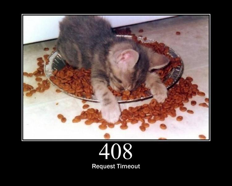 408.jpg