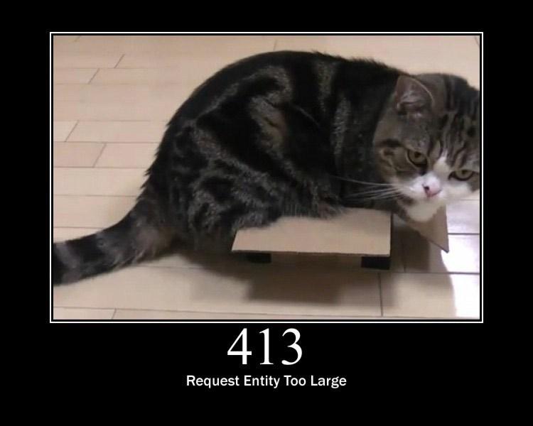 413.jpg