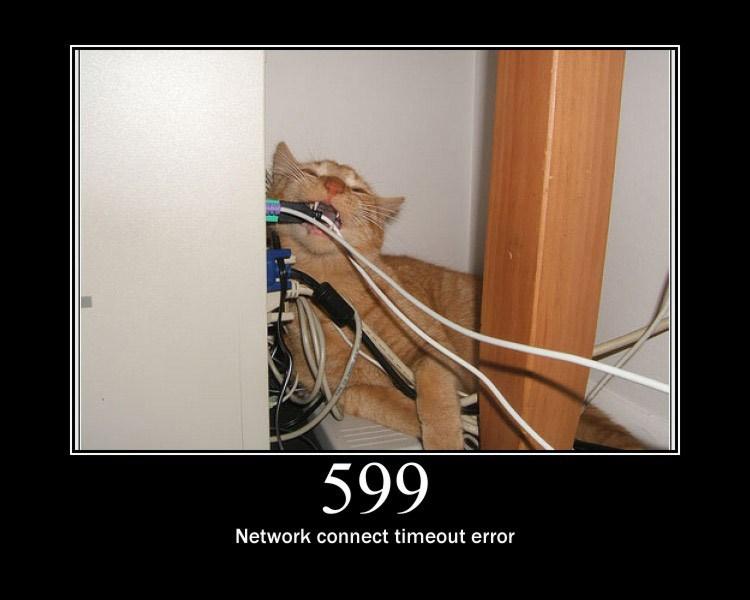 599.jpg