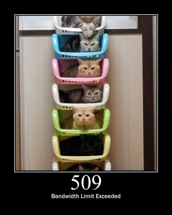 509.jpeg