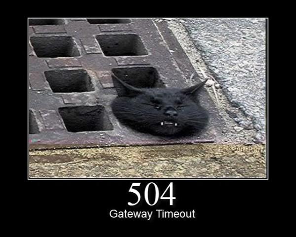 504.jpg