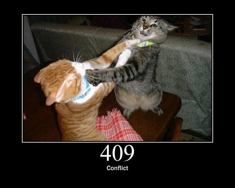409.jpg