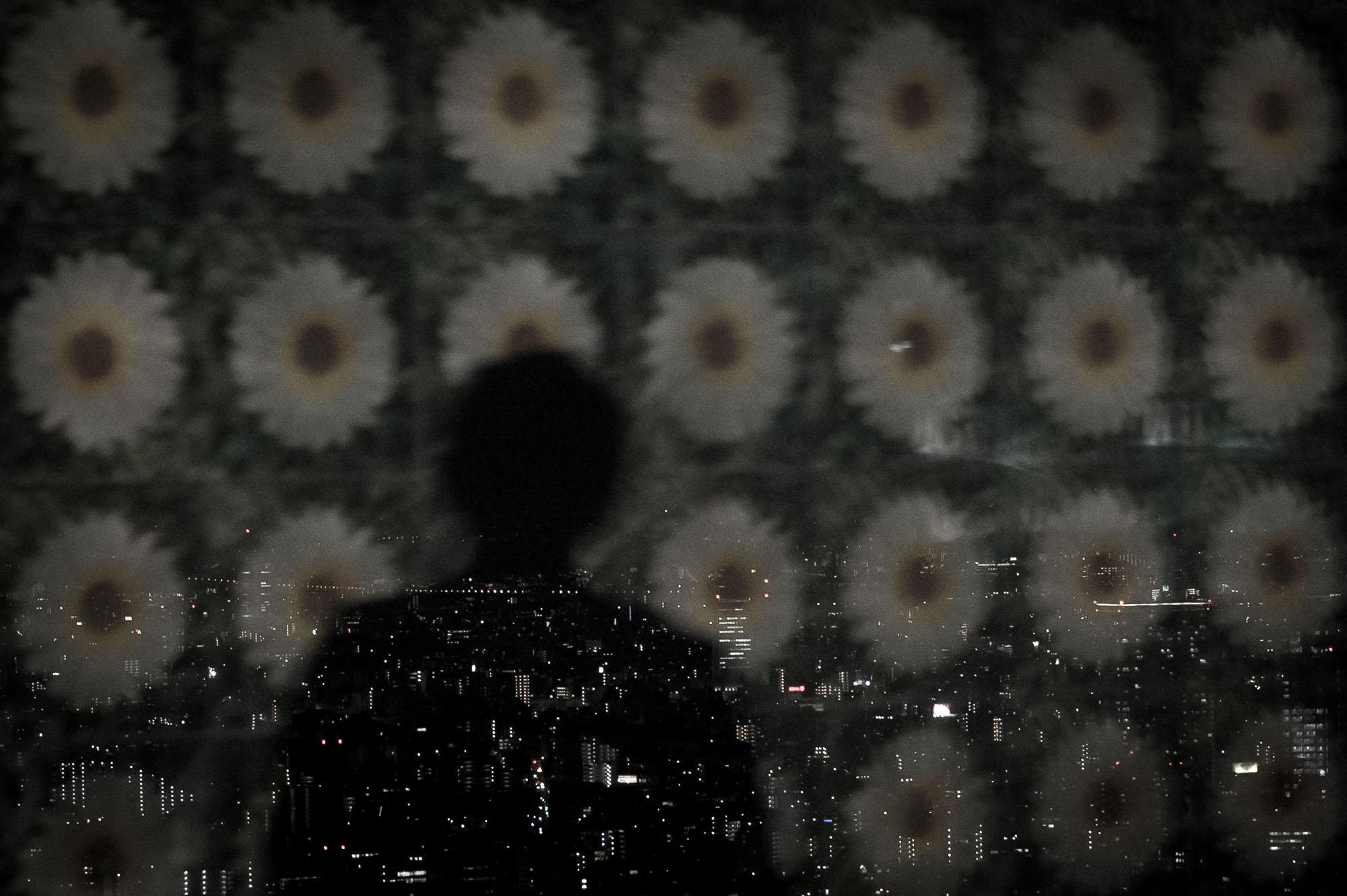 Tokyo - Alone with 38 Million-1.jpg