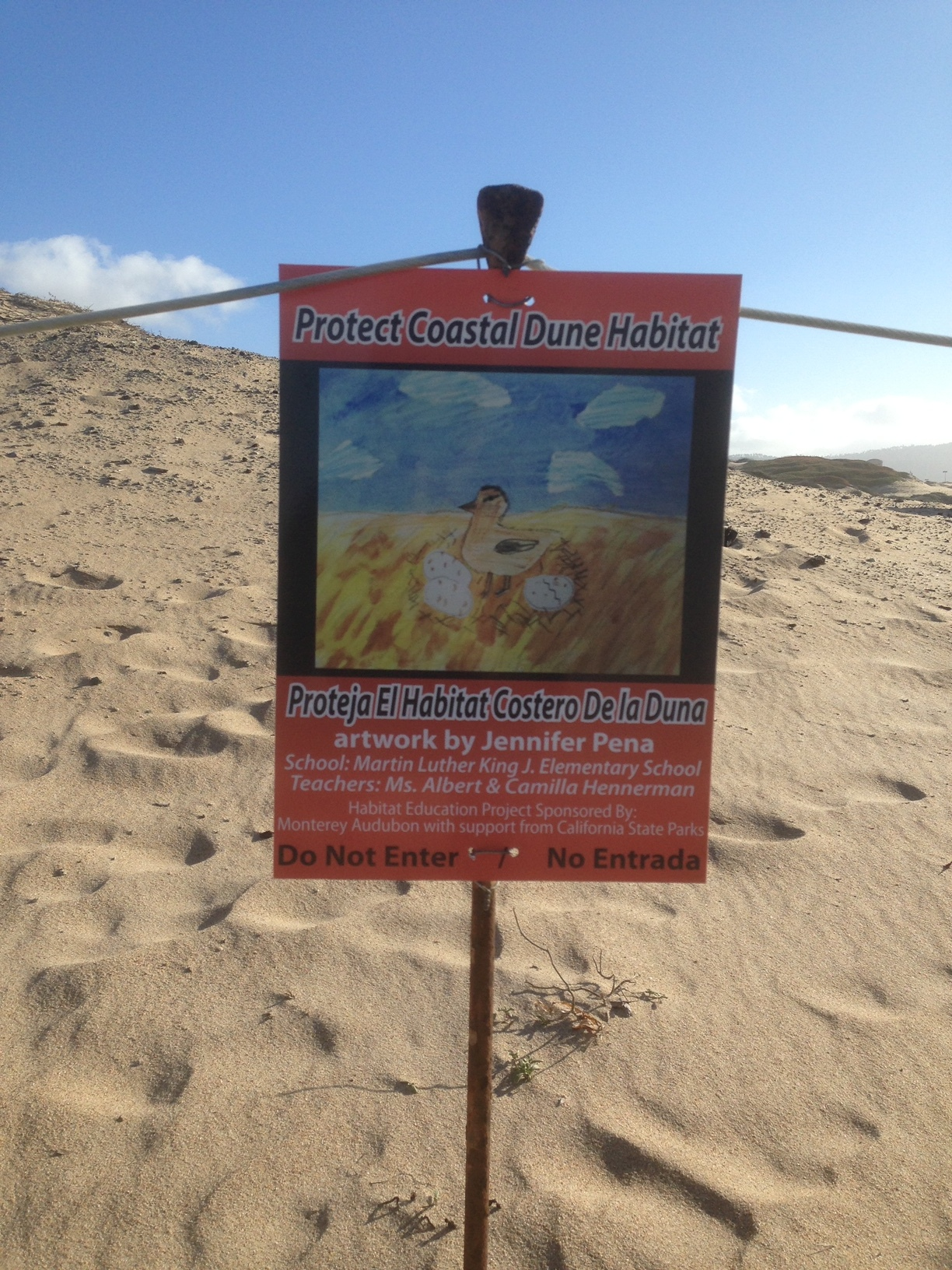 Jennifer Pena's Plover Awareness Sign was one among several dozen installed on the southern shore of Monterey Bay.