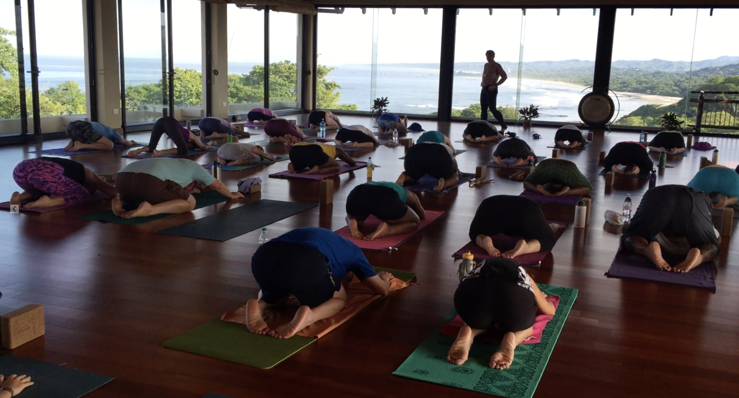 YP Yoga Teacher Training - YP offers 200Hr and 500Hr Yoga Teacher Training Certification.  All programs are Yoga Alliance Accredited.  YP holds programs in Ft. Worth, TX, Costa Rica, Thailand and Bali.