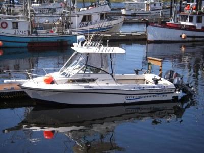 West Edge Charters Boat - Grady White