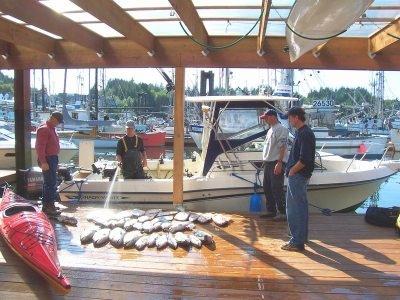 Ucluelet Fishing Charters.sized.jpg