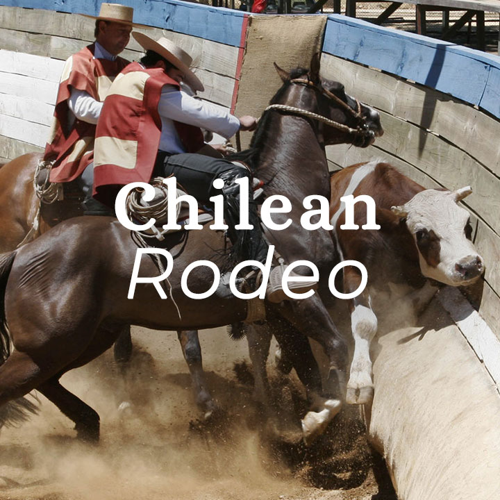 wine-rodeo.jpg