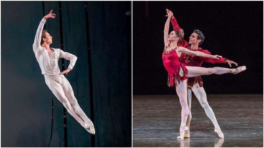 1501093904404-ballet.jpg